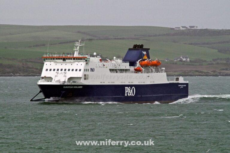 European Highlander in Loch Ryan. © Steven Tarbox/niferrysite